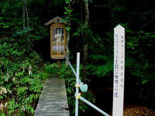 0816 滝温泉2